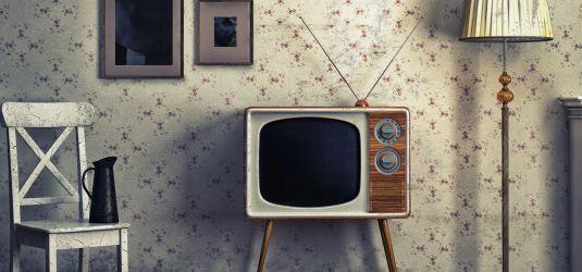 wahlprogramme zu rundfunkbeitrag und 7 tage l schpflicht. Black Bedroom Furniture Sets. Home Design Ideas