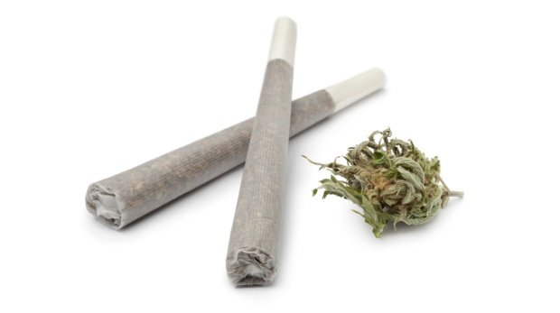 Joints und Cannabis