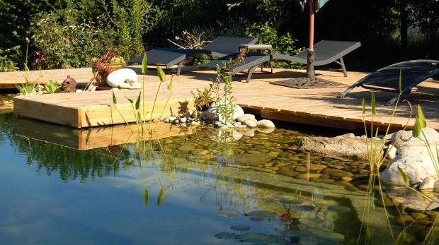 OLG Frankfurt zur fristlosen Kündigung eines Mieters: Schwimmbecken statt Bio-Teich gebaut