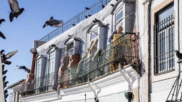 LG Bonn zu Tauben fütternder Mieterin: Aus der Wohnung geflogen